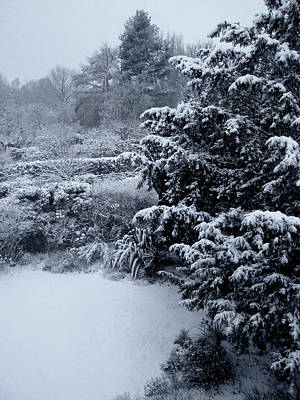 Photograph - Winter by Roberto Alamino