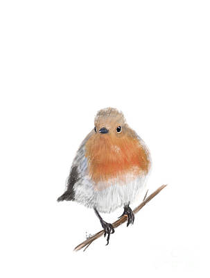 Painting - Winter Robin by Bleu Bri