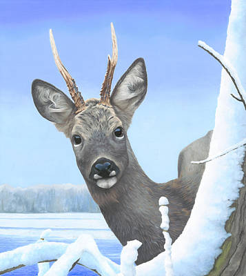 Painting - Winter Roebuck by Clive Meredith