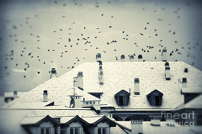 Winter Roofs Art Print by Silvia Ganora