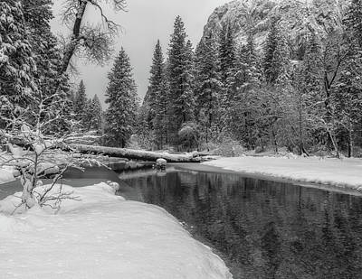 Photograph - Winter Scene In Bw by Jonathan Nguyen