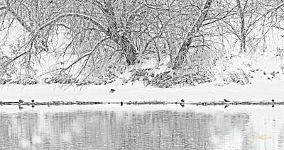 Photograph - Winter Scene On The Platte River by Amanda Smith