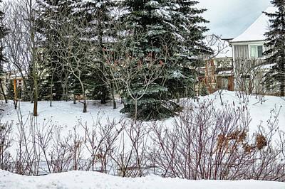 Photograph - Winter Scene by Tatiana Travelways