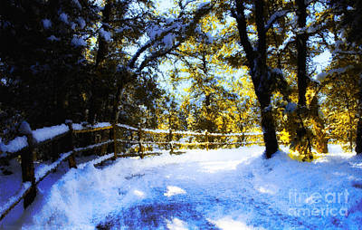 Winter Scene Art Print by Terry Runion