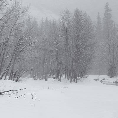Photograph - Winter Scenery 3 by Jonathan Nguyen