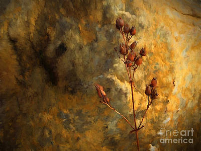 Winter Seeds Art Print by Mike Nellums
