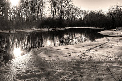 Photograph - Winter Sepia by Betsy Zimmerli