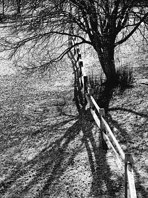 Photograph - Winter Shadows by Kathi Isserman