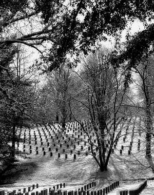 Photograph - Winter Silence In Arlington Cemetery by L O C