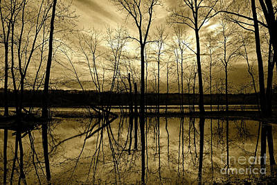 Photograph - Winter Silence by Third Eye Perspectives Photographic Fine Art
