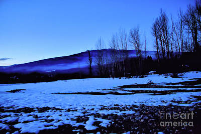 Photograph - Winter Silhouette by Victor K