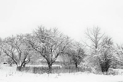 Photograph - Winter Sketch by CJ Schmit