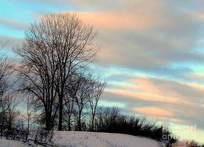 Photograph - Winter Sky by Elfriede Fulda