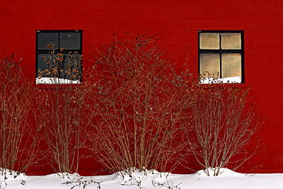 Art Print featuring the photograph Winter Sky Reflection by Don Nieman