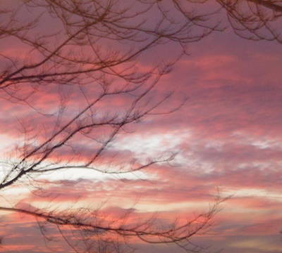 Photograph - Winter Sky by Stephanie Moore