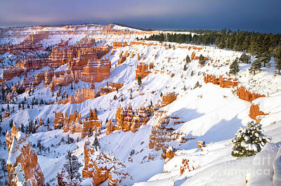 Photograph - Winter Snow Covered Hoodoos Bryce Canyon National Park by Dave Welling