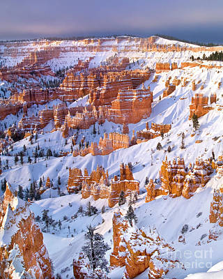 Photograph - Winter Snow Covered Hoodoos Bryce Canyon National Park Utah by Dave Welling