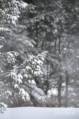 Art Print featuring the photograph Winter Snow by John Black