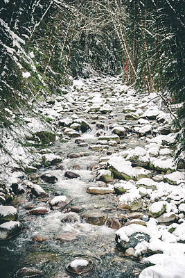 Photograph - Winter Snow On Riverbed Rocks In Hallway Of Forest Trees by Open Range
