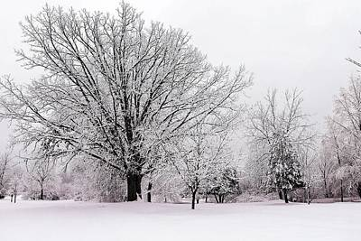 Photograph - Winter Snow Storm 1 by Scott Hovind