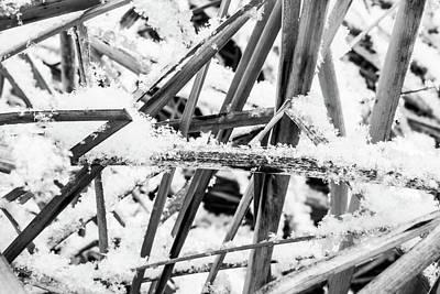 Photograph - Winter Snow by Tyson Kinnison