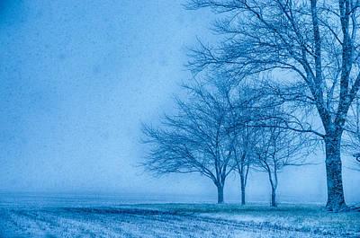 Gold Pattern - Winter Snows by John Diebolt