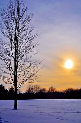 Photograph - Winter Solitude  by Michelle McPhillips