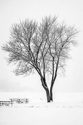 Photograph - Winter Solitude by Stewart Helberg