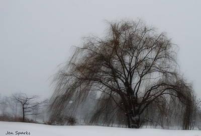Photograph - Winter Soul by Jen Sparks