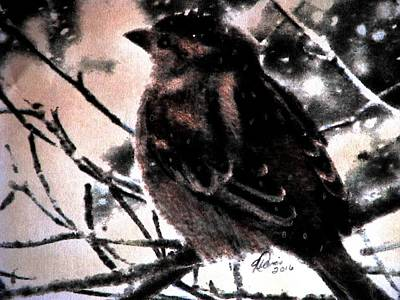 Drawing - Winter Sparrow by Angela Davies