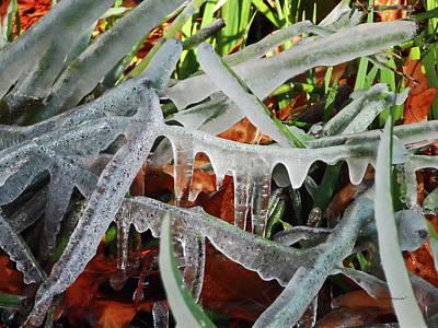 Photograph - Winter Splash by Harold Zimmer