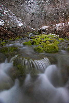 Photograph - Winter Spring Hollow by David Andersen