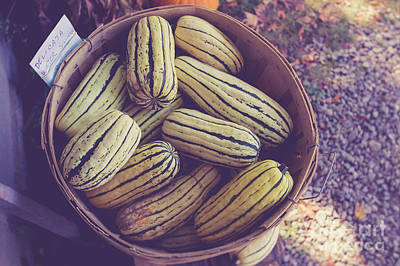 Photograph - Winter Squash For Sale At A Farm Stand by Edward Fielding