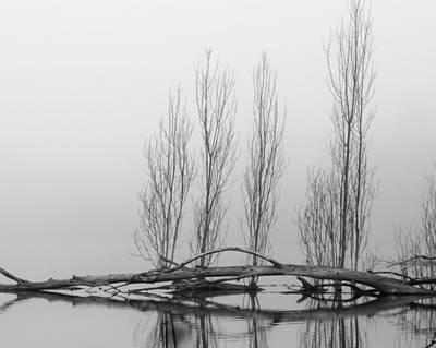 Photograph - Winter Starkness by I'ina Van Lawick