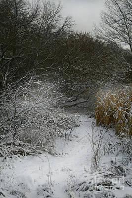 Stew Photograph - Winter Stew by Jan Piller