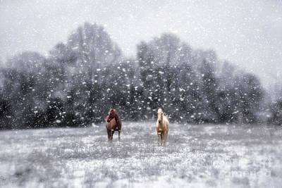 Winter Storm Art Print by Darren Fisher