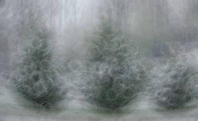 Photograph - Winter Storm by Helga Skinner