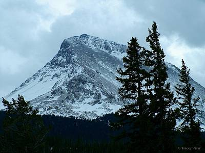 Photograph - Winter Storm Over Divide Mountain by Tracey Vivar