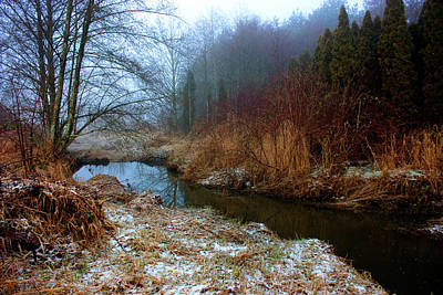 Winter Stream Art Print