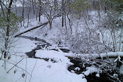 Photograph - Winter Stream Bed by Scott Kingery