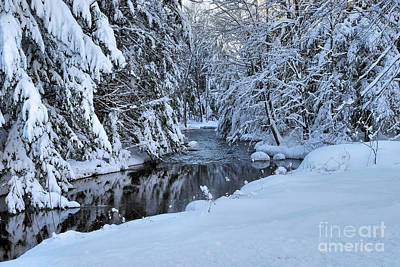 Photograph - Winter Stream by Debbie Stahre