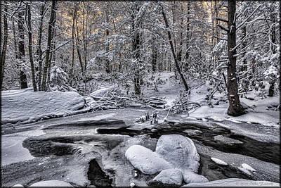 Photograph - Winter Stream by Erika Fawcett