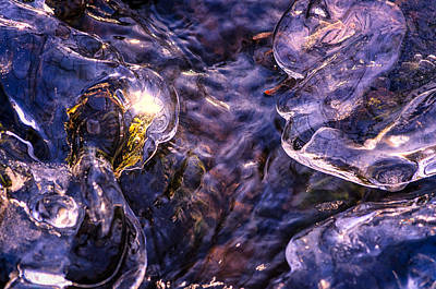 Photograph - Winter Streams by Craig Szymanski