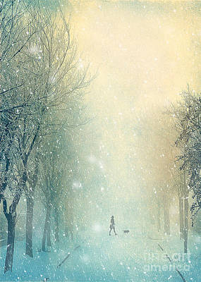 Frost Mixed Media - Winter Stroll by Svetlana Sewell