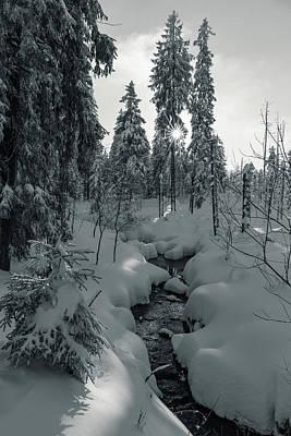 Photograph - winter sun in Upper Harz - monochrome version by Andreas Levi