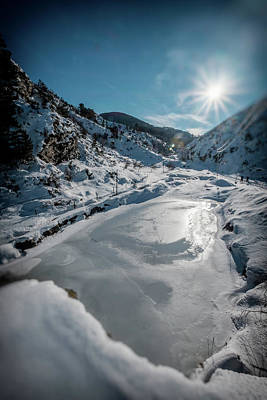 Photograph - Winter Sun by Okan YILMAZ