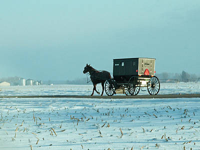 Amish Photograph - Winter Sun On Amish Buggy by David Arment