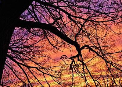 Winter Sundown Original by John Adams