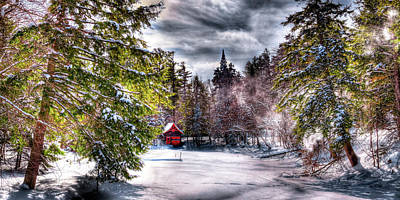 Photograph - Winter Sunlight by David Patterson