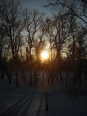 Photograph - Winter Sunrise Between Trees by Kent Lorentzen